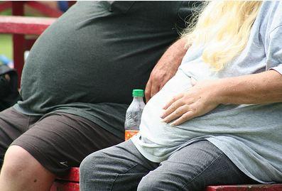 השמנה: צילום: CC BY TOBYOTTER